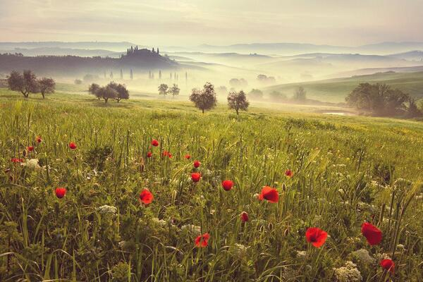 Tuscany in Spring! http://t.co/Ll7W7b2jBd