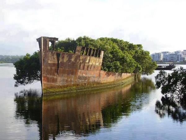 102-Year-Old Abandoned Ship is now a Floating #Forest http://t.co/hNv4Di8ITu @FreakyAbandoned @TheWorlStories