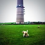RT @The_ChrisShaw: Glorious tranquility at #EmleyMoor #ILoveHD :) http://t.co/ULuLEAGx0z