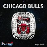 The 2014 NBA Champion @chicagobulls? http://t.co/wt6aPXeLdh