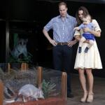 Easter Bilby? Royal family visits Australia's version of the Easter Bunny http://t.co/O7ykKOcUi1 http://t.co/qJubZKxvSr