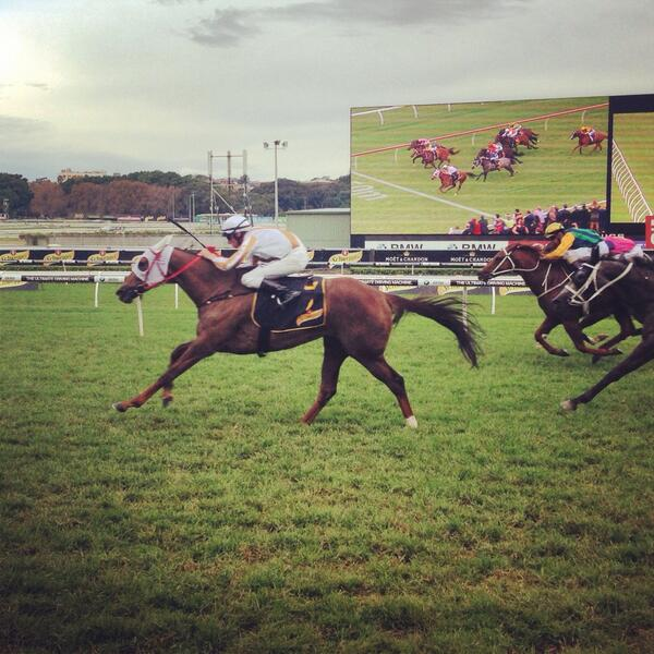 Hana's Goal wins the Group 1 Schweppes All Aged Stakes! http://t.co/GDKF9LKUPS