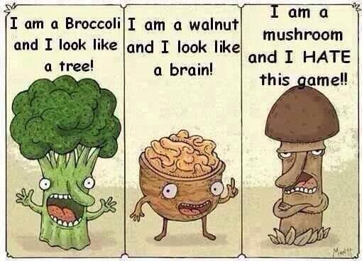 Spring joke... http://t.co/V42vxel3s0