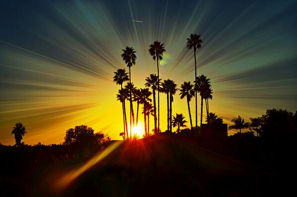 Rise and shine San Diego! Check out some fun things to do in Pacific Beach - http://t.co/qPYSTRGibU http://t.co/GG6M327ScC