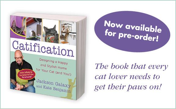 Announcing the official launch of #Catification co-authored by @hauspanther & @JacksonGalaxy! http://t.co/eOpO5M5ZSg http://t.co/2qsKyYYSiZ