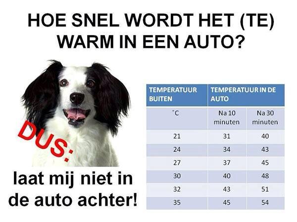 Warm weer: laat uw hond niet achter in uw auto vandaag! Zie de afbeelding voor meer info. http://t.co/9frLHbZkzc