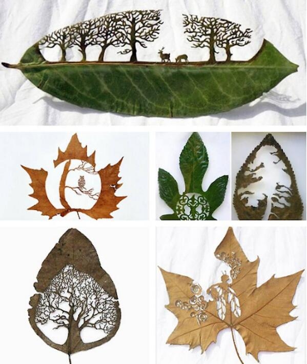 Extraordinary leaf artwork, by Lorenzo Duran http://t.co/FJsD3V6CLb