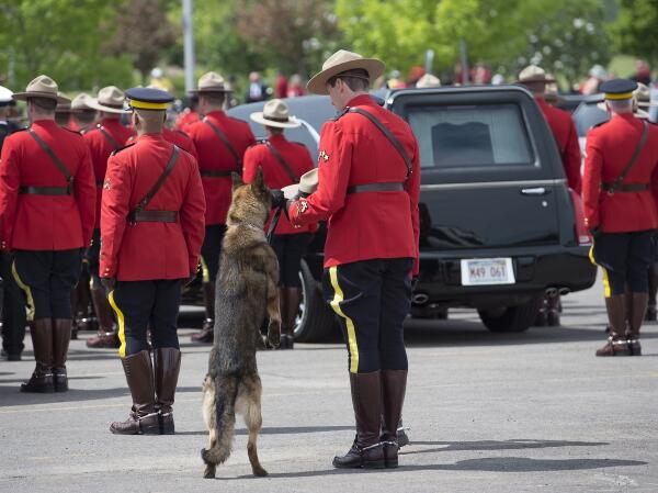Now this moved me to tears MT @TondaMacC: CP's Andrew Vaughn captured this pre-funeral shot of #RCMP K9 dog Danny http://t.co/i9Kk2rb8U3