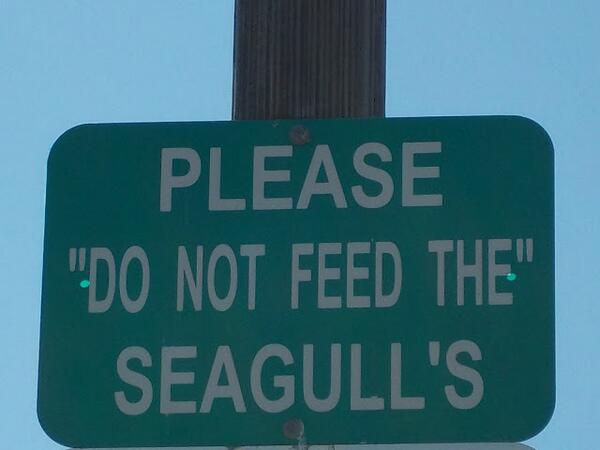 "Is ""do not feed the"" a euphemism for something? The seagull's what? SO MUCH going on in this sign. (via @mteblogmama) http://t.co/NmepNj1W2B"