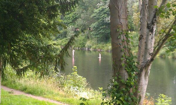 Obviously its not too cold for an 8am skinny dip in the River Taff! http://t.co/lri3KkijXF