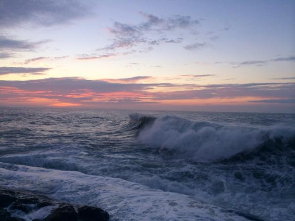 the ocean's pulse http://t.co/SKcS8fxYli