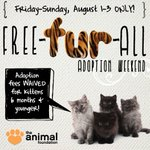 RT @animalfndlv: #BREAKING #VEGAS: We're full w/ Kittens! Fees waived 8/1-8/3 for cats 6 mos & yngr #FreeFURAll http://t.co/YhSXiAHJ8V http://t.co/LQUMDHcDST