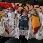 RT @unicefireland: A ray of hope: 5 babies, born on the same day, shelter in a UN school as humanitarian ceasefire is announced #Gaza http://t.co/Sm83l2eaGK