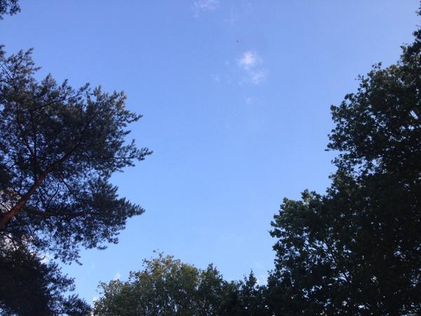 Himmel über #kibbeling50