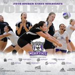 Our first match of the 2014 is just 30 days away against Maryland-Eastern Shores. Go Wildcats! #WeAreWeber #BigSkyVB http://t.co/ZmxqhqGTXx