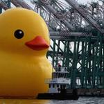 Giant Rubber Duck makes a splash in Port of Los Angeles http://t.co/huHyTEs4n8 http://t.co/GZySVn0bHR