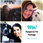 RT @10News: If you love your pets as much as we do, enter for a chance to win a Pampered Pet Package! http://t.co/TDJT8c9H7u http://t.co/HJvL1Vn9Tv