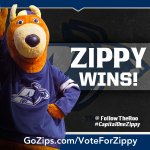 RT @FollowTheRoo: Round 1 is in the books & Zippy won w/85% of the vote to extend her winning streak to 14-straight. #CapitalOneZippy http://t.co/Jos6ZtPMPs