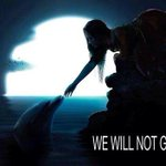 @CarolineKennedy @BarackObama RT @leabaldwin: I CANT HEAR YOU PEOPLE!! WILL WE GIVE UP? HELL NO!! #tweet4taiji http://t.co/ELYzFgEEkg