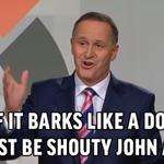 RT @nzsaysfun: If it barks like a dog... #decision14 #keyvcunliffe #nzpol http://t.co/DiDwVkdEoU