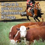 RT @VitoCastro6: #WeasQueMeCaenMal EL RODEO http://t.co/pdhuqvIAb6