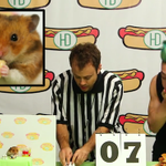 Tiny Hamster takes on Kobayashi in a hot dog eating contest. http://t.co/vghmuiS1s3 http://t.co/fEpXmUnyNo
