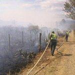 Continúa incendio en Villa de Leyva; 400 personas trabajan para mitigarlo http://t.co/YHq1PoY46I Foto: Andrea Rico http://t.co/ewAvDYeNr6