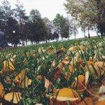 #ярославль #yaroslavl #October #byseptember #hellooctober #autumn #осень #ярославль #окт... http://t.co/AK0Pf2090X http://t.co/PosK1mZR13