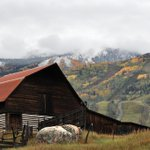 RT @ScottFranz10: First snow behind #Steamboats famous barn. Winter is coming. #cowx http://t.co/Vu6MWgxOWz