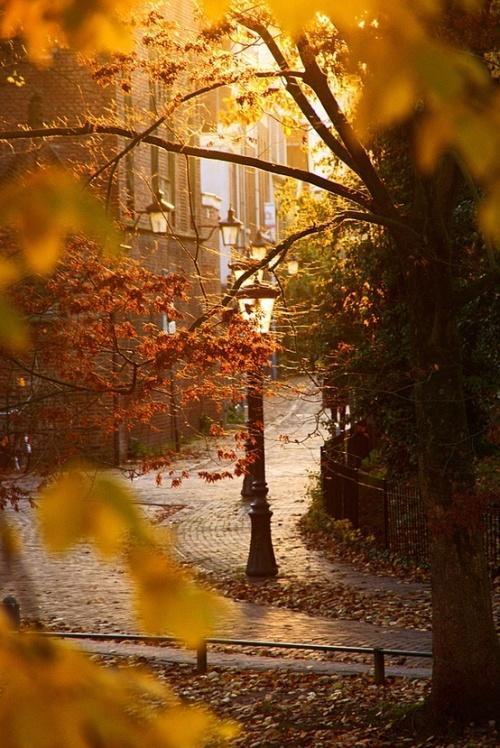 С добрым красивым осенним утром:) #goodmorning http://t.co/bJTjhNAzRv