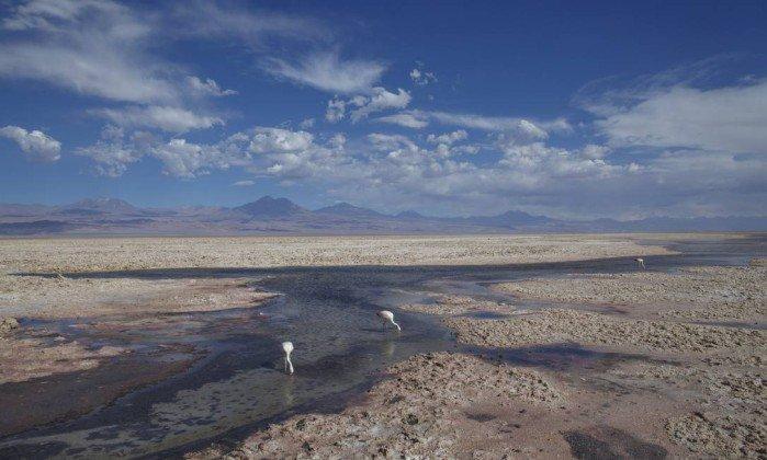 A bordo de um Fusquinha, expedição cruza sete países sul-americanos. https://t.co/5gLt1gB5z2