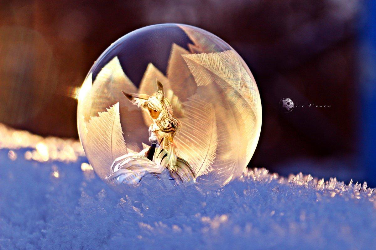 薄氷花(この写真はやっぱりこっちの方が良いな)#ブレソSS加工部#ブレイドアンドソウル