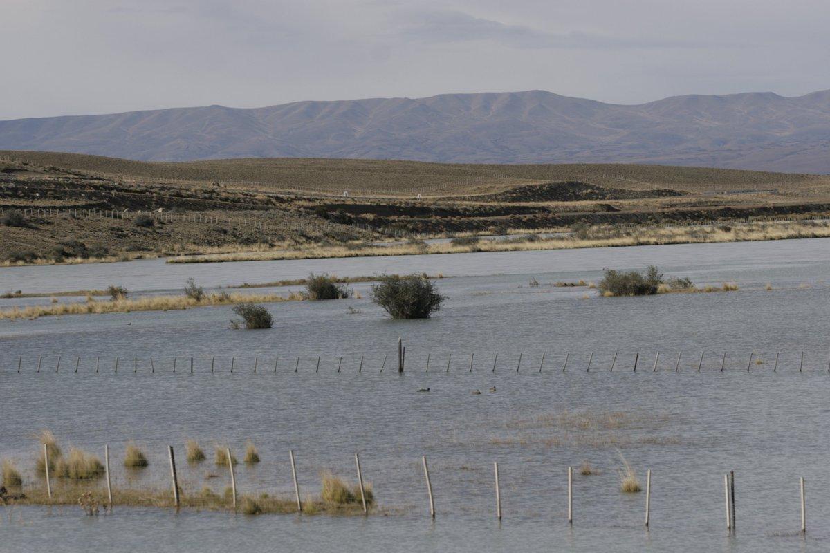 La deforestación provoca inundaciones que aumentarán por el #cambioclimático