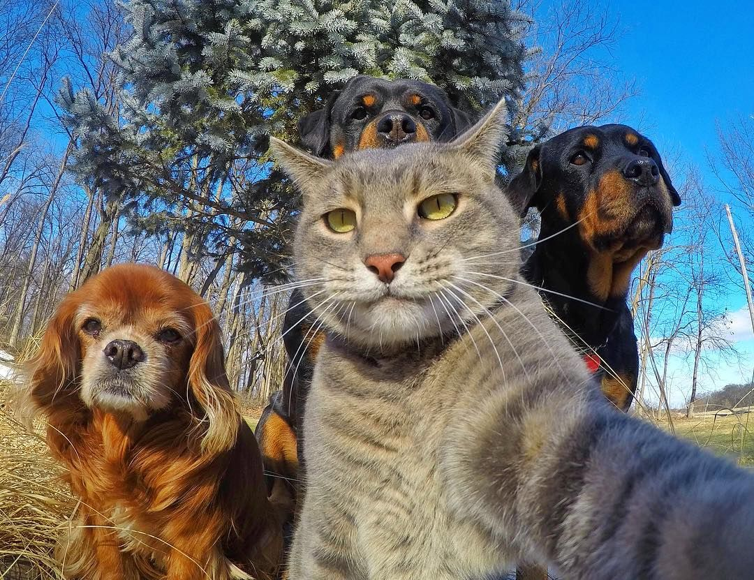 Selfie with the crew https://t.co/BIs8elx8Vb