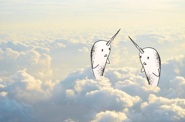 RT @hitRECord: Narwhals in the clouds... there are worse things — https://t.co/Rug4AvUs8t https://t.co/AkuzBRKgn1