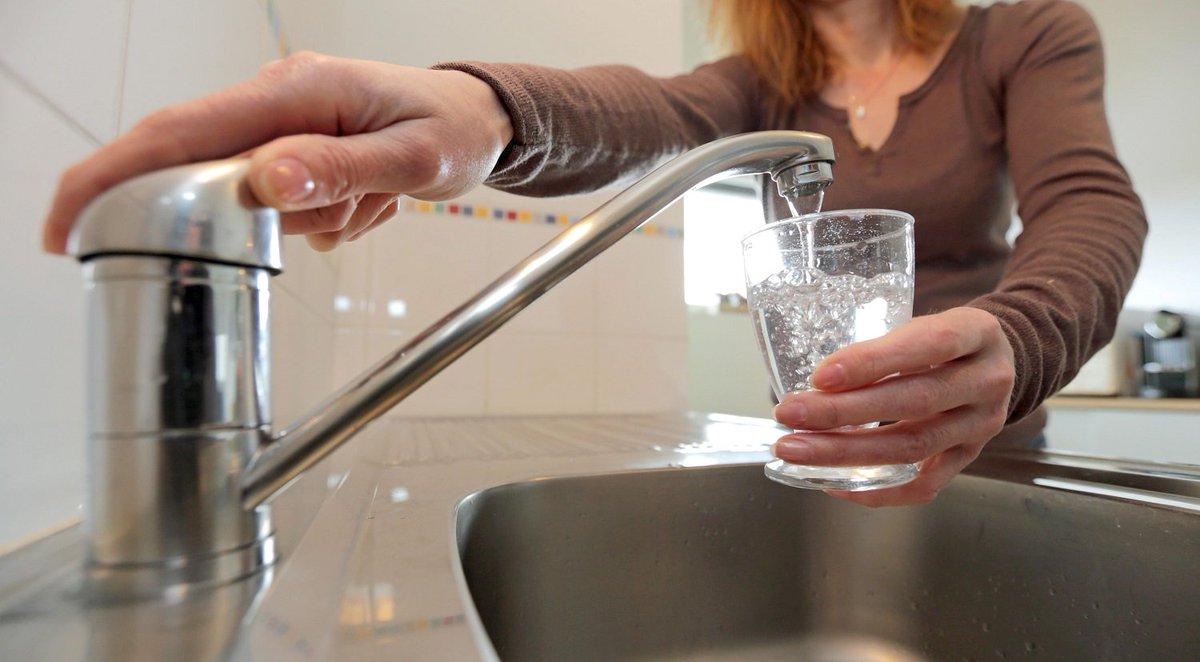 Kermit la grenouille et peggy la cochonne se s parent - L eau du robinet c est pour les grenouilles ...
