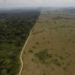 Using Eyes in the Sky to Map Biodiversity