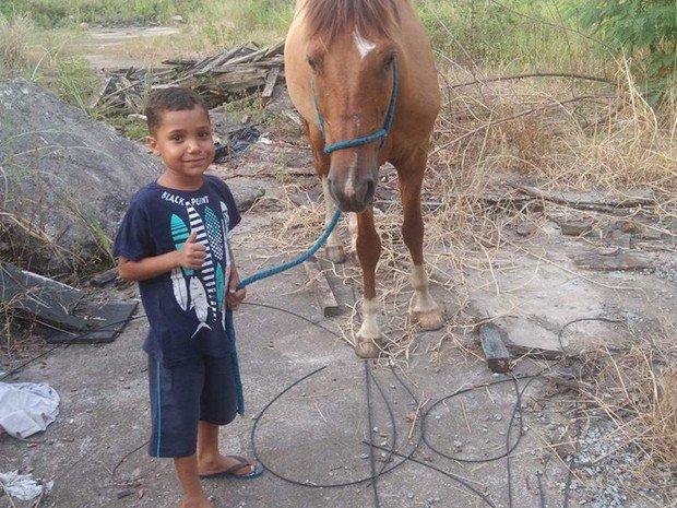 Ladrão devolve cavalo roubado após ver post sobre sofrimento de criança https://t.co/lZlXuiWY0C #G1