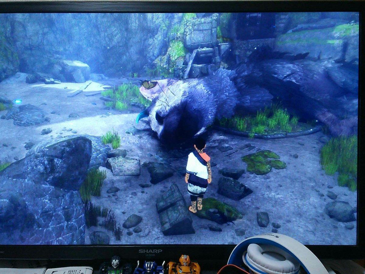 ゲーム始めたらいきなりトリコが倒れてて!?ってなったけど、そういや最後にプレイした時に敵の大鷲にガブガブ噛みつかれてザシ