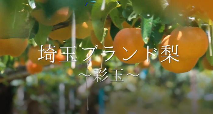 【自治体@PR】日本初!? 農産物とヒップホップがコラボ!埼玉ブランド農産物PR映像が公開。 GAGLEのHungerが