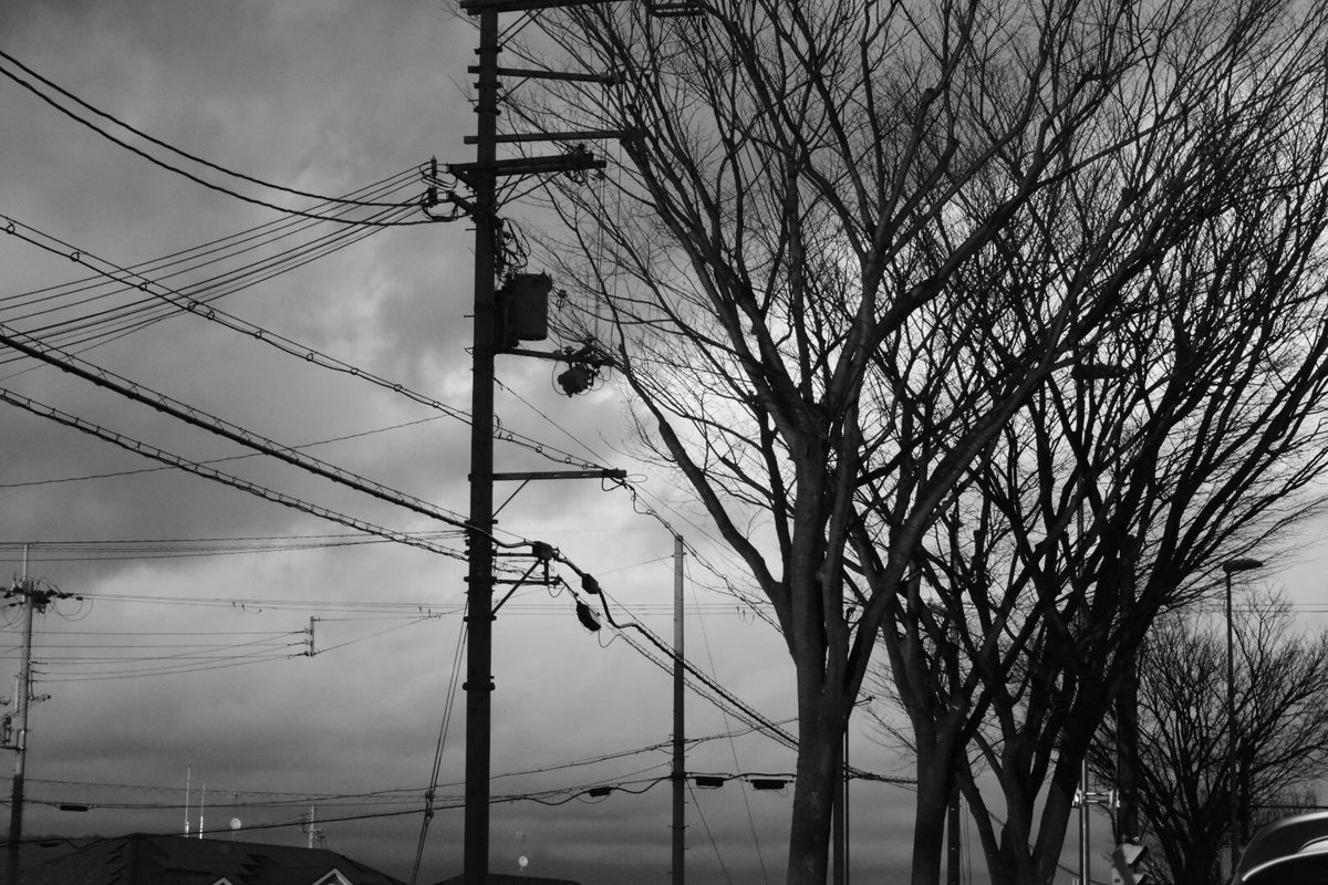 最近ハマってる撮り方(°▽°)#モノクローム  #ピンボケ#photography #ファインダー越しの私の世界