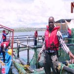 Cage fish farming on Lake Victoria
