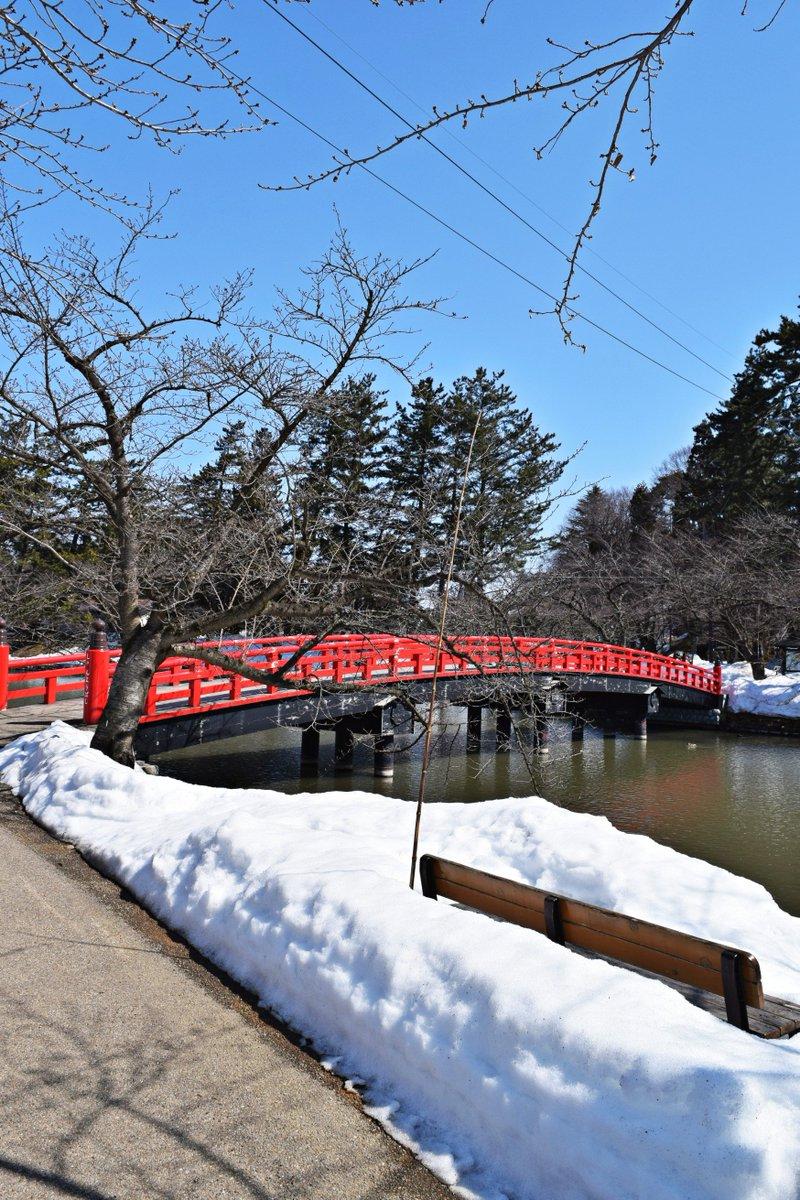 2巻表紙の場所、弘前城春陽橋。千夏ちゃんとお団子食べたい。 #ふらいんぐうぃっち