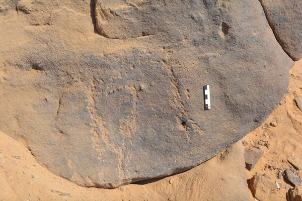 Ancient rock carvings depicting masked people discovered in Egypt https://t.co/H2G95FyOCW