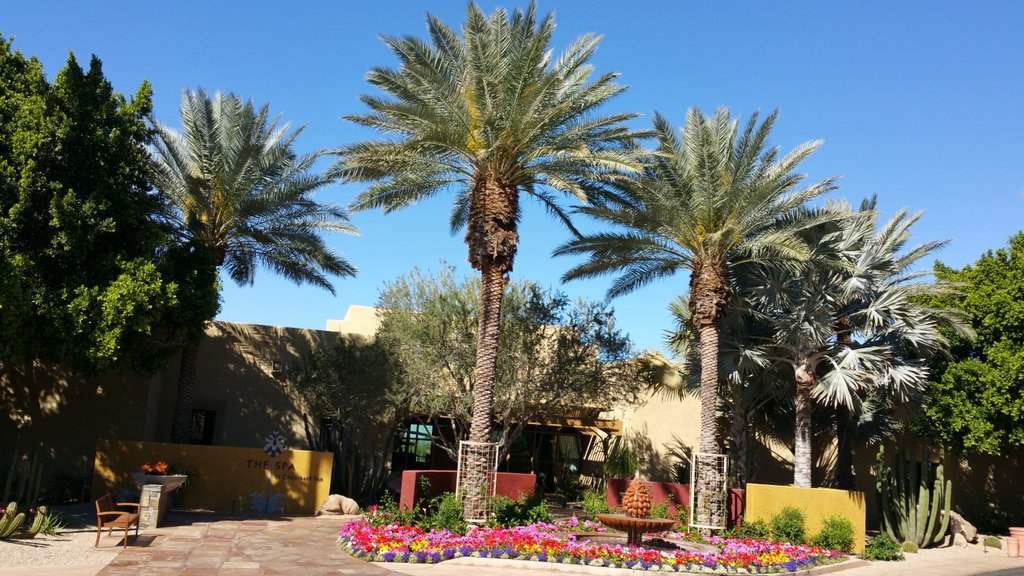 test Twitter Media - @camelbackinn I hope to return to the Phoenix-Scottsdale  area for a longer visit sometime this year, and will surely let you know @camelbackinn. https://t.co/44nF5gxtz7