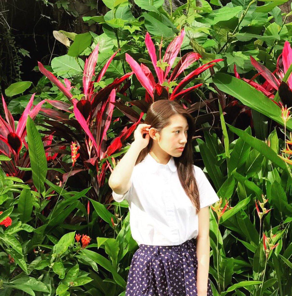 桜井玲香さんの写真集 初日に泊まったイポー郊外のバンジャラン ホットスプリングスの温泉の周りには、...