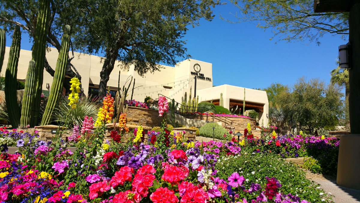 "test Twitter Media - The beautiful sights, sounds & scents @camelbackinn, a landmark luxe @MarriottResorts in @scottsdaleaz makes you just say ""Ahhh, at last."" https://t.co/lkz7W1CIVY"