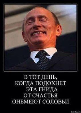 """""""Ваша борьба - это наша борьба"""", - сенатор Маккейн верит что в 2017 году украинские земли будут освобождены от захватчиков - Цензор.НЕТ 9976"""