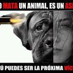 Un asesino comienza matando y torturando animales cuando es menor de edad.  #NoAlMaltratoAnimal http://t.co/8pJemWYZym