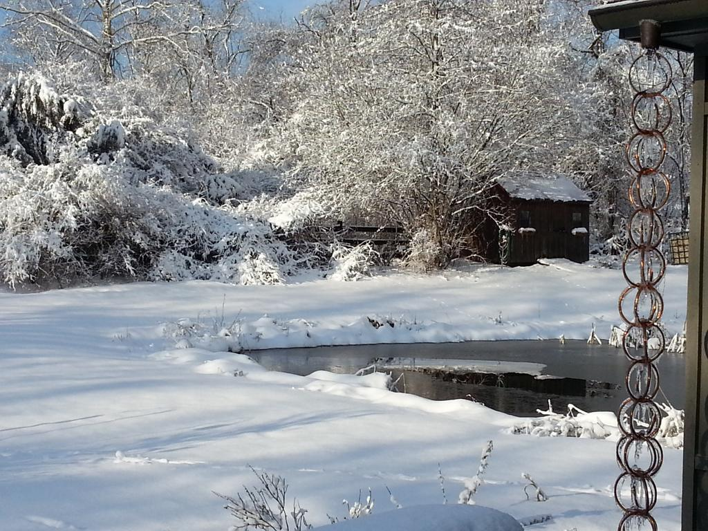 Snow is infuriatingly beautiful this morning. http://t.co/DaWxNDUdlv